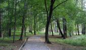 Боровата гора в Княжево такава каквато е днес и такава трябва да остане за децат